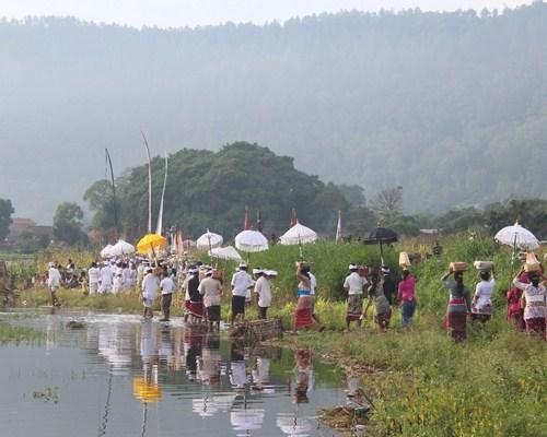 Desa Kedisan, Desa Cantik Di Kaki Gunung Batur Kintamani
