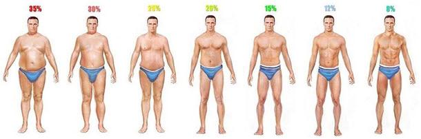 男子体脂肪率イラスト 35% 30% 20% 25% 15% 12% 8%