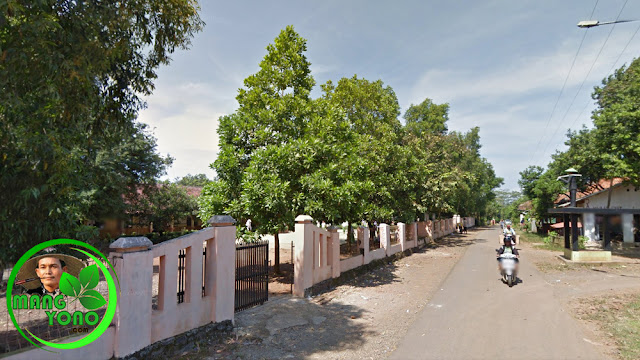FOTO : SDN BENDUNGAN, Pagaden Barat, Subang. Belok ke sebelah kanan menuju rumah admin.