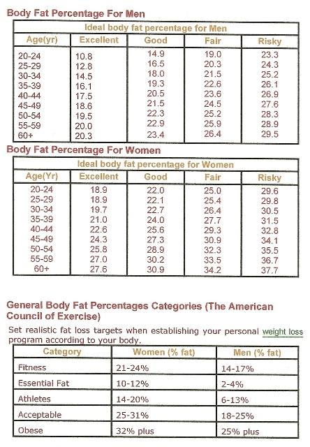 Celebrity body fat percentages male pattern