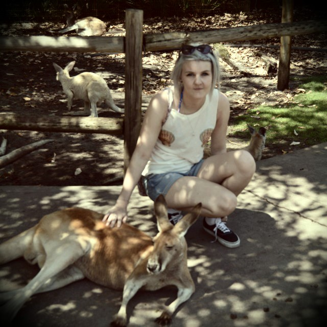 kangaroos and me
