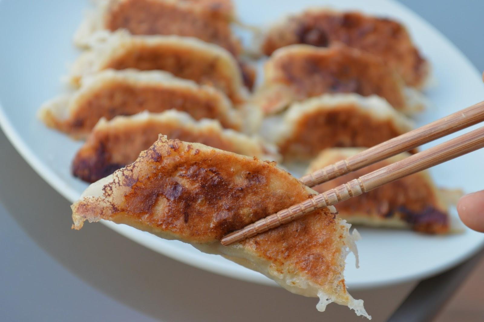 pan fried dumplings pan fried dumplings 10pcs chinese fried dumplings ...