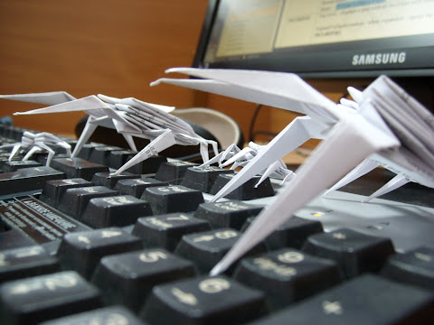 Крабы оккупировали клавиатуру