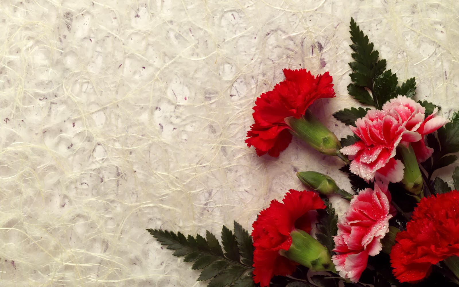 Beautiful red flowers hd wallpaper izmirmasajfo