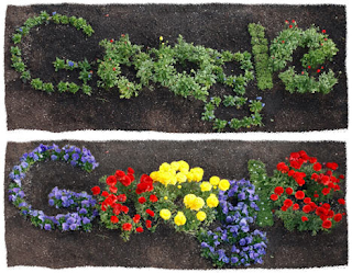 google doodle dia de la tierra