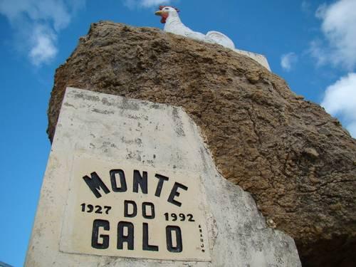 Veneração ao Galo e a Santa no Sertão Nordestino