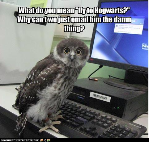 Images marrantes Funny-owl-image-07