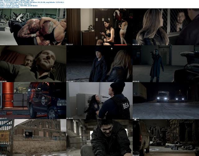capturas Bail Enforcers 2011 [DVDRip] Subtitulos Español Latino Descargar [1 Link]