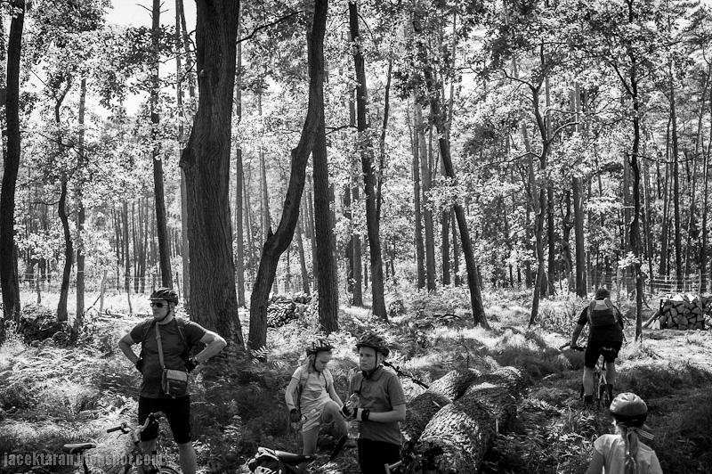 wycieczka rowerowa, puszcza niepolomicka, trasa rowerowa, niepolomice