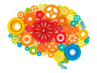 El cerebro es como un músculo que necesita ejercitarse para dar lo mejor de si mismo