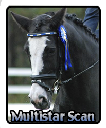 Multistar Scan