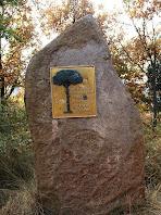 El monòlit amb la placa commemorativa del Pi Gros