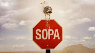 stop sopa dan pipa