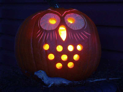 It looks like the owl has caught himself something to snack on for later.
