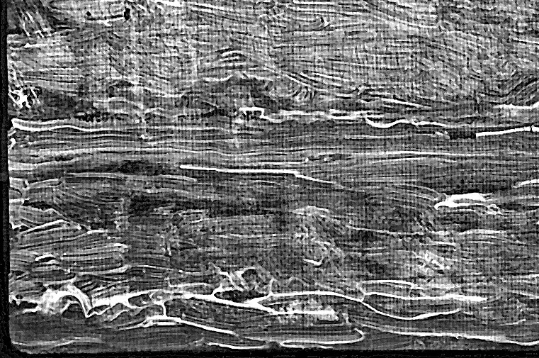 Vincent van Gogh Landscape with Ploughman digital RTG xray close up