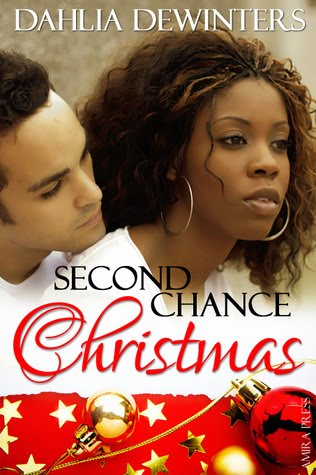 Book Babe: Second Chance Christmas by Dahlia DeWinters