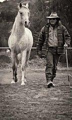 Σταυρος ( Steve ) Βεργης -  (εκπαιδευτης αλογων)