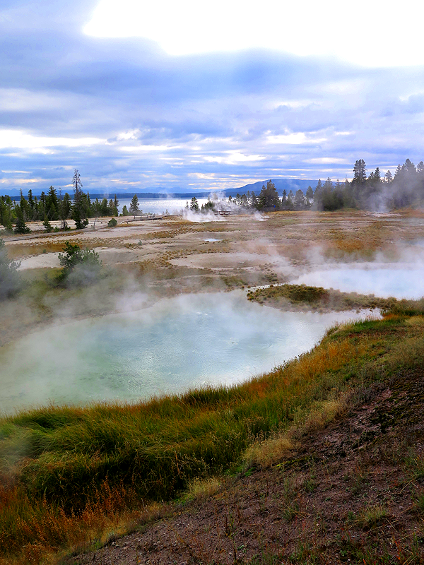 Yellowstone West Thumb Geyser Basin