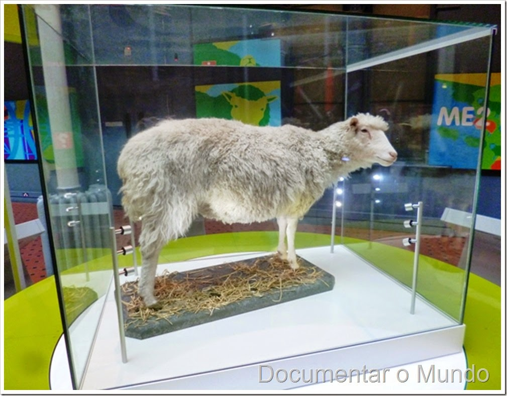 Ovelha Dolly; National Museums of Scotland; Museus gratuitos em Edimburgo