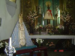 ACOGIDA-2006