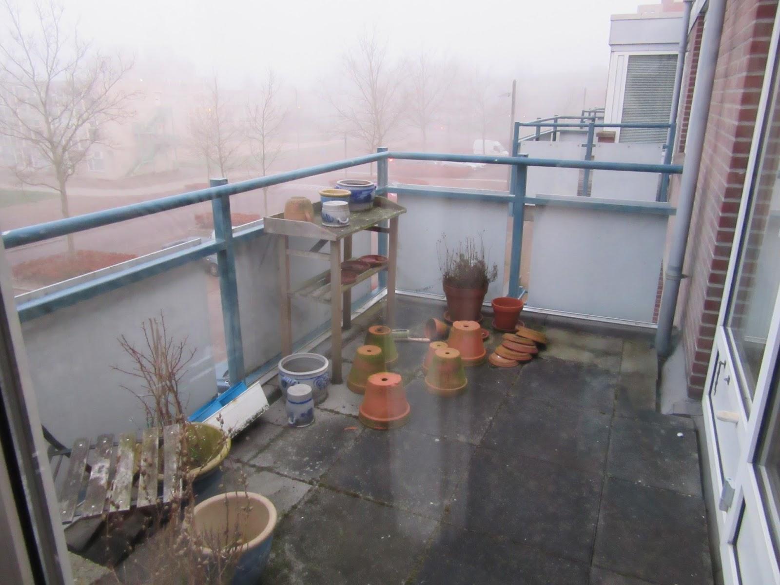 Bettina schrijft mijn balkon lente 2015 - Winter flowers for balcony ...