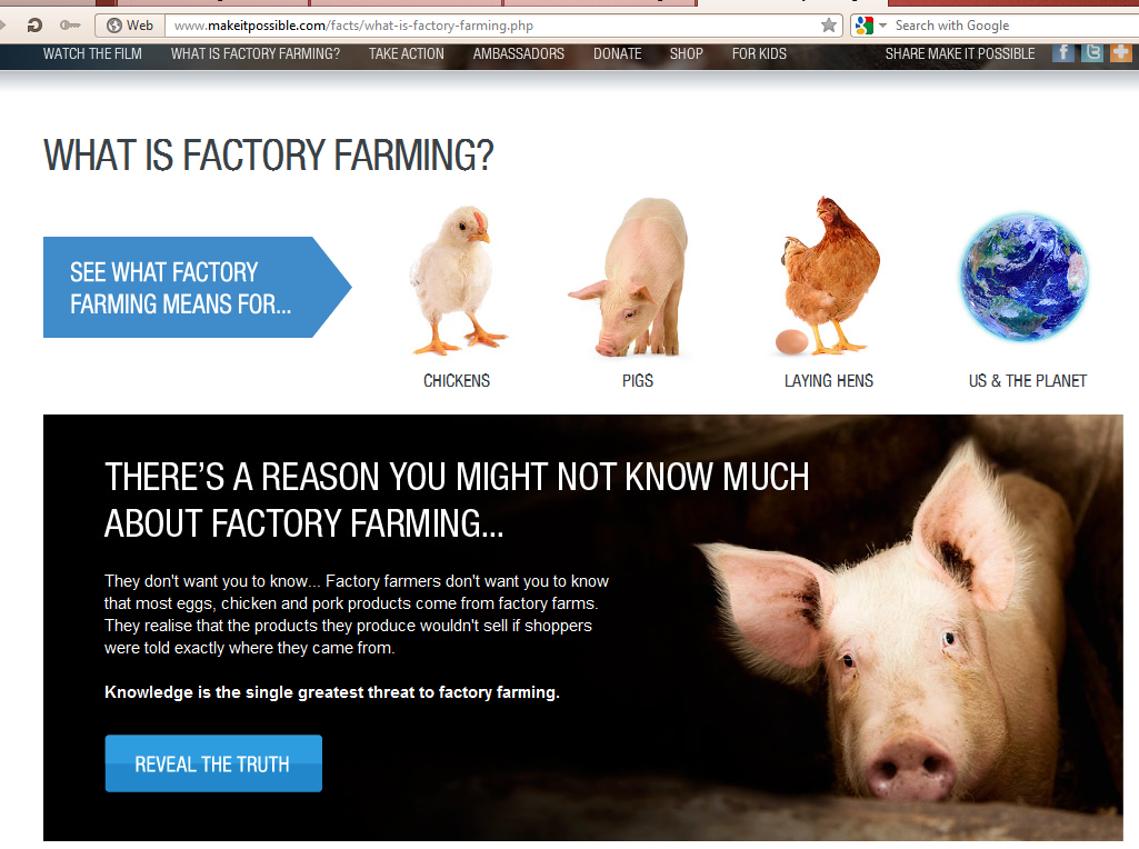 factory farms and animal cruelty essay