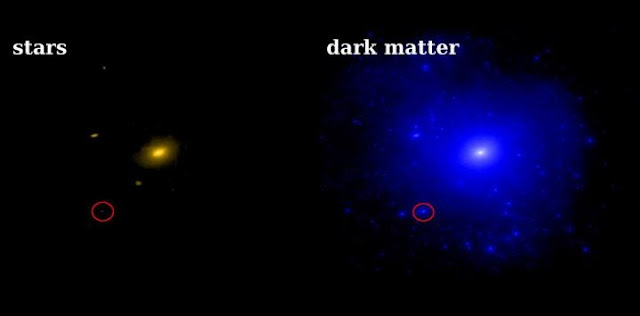 Dwarf galaxies have few stars but lots of dark matter. This Caltech FIRE (Feedback in Realistic Environments) simulation from shows the predicted distribution of stars (left) and dark matter (right) around a galaxy like the Milky Way. The red circle shows a dwarf galaxy like Triangulum II. Although it has a lot of dark matter, it has very few stars. Dark matter-dominated galaxies like Triangulum II are excellent prospects for detecting the gamma-ray signal from dark matter self-annihilation. Credit: A. Wetzel and P. Hopkins, Caltech