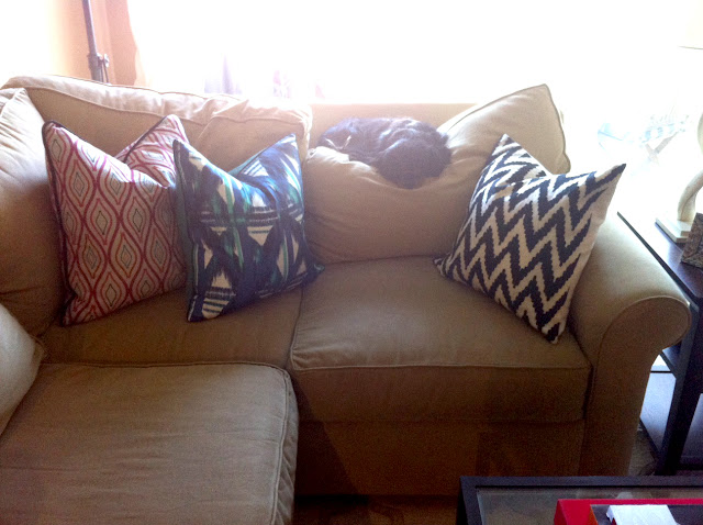 Patterned pillows, small l-shape couch, small l couch, dog on couch, cavalier on couch, Living room before and after, Coffee table before and after, before and after, coffee table style, coffee table styling, coffee table design, coffee table vignette, patterned pillows, bench seats, velvet bench seats, turquoise bench seats, small l-shape couch, trellis rug, lattice rug, Side table vignette, horn lamp, sheep skin throw, pink flowers, pink peonies, coffee table books, brown club chair, glass knot, iron and glass coffee table, living room design, succulent, made her look, madeherlook.net, madeherlook.blogspot.com