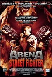 ARENA OF THE STREET FIGHTER (2012) ONLINE