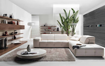 #9 Home Design Ideas Contemporary Living Room