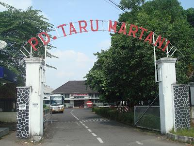 Image result for taru martani