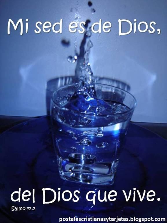 Postal Tengo sed del Dios que vive. Mi alma tiene sed del Dios vivo. Quiero tomar el agua divina.  Señor, Dame de beber. Dios sacia tu sed. Agua de vida.  Salmo 42.