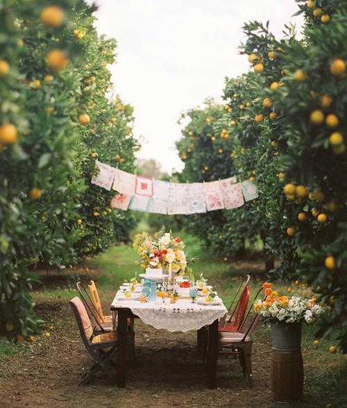 Inspire Bohemia Outdoor Dining U0026 Parties Part II