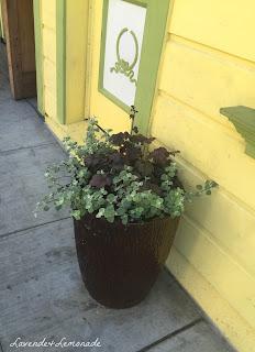 Urban gardening in San Francisco - container gardens