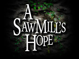 http://www.kickstarter.com/projects/davidlist/a-sawmills-hope-adventure-fantasy-novel-set-in-sil