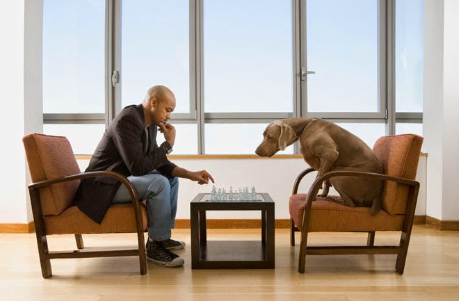 Testing animal inteligence ielts reading practice