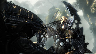 #3 Aliens vs Predator Wallpaper