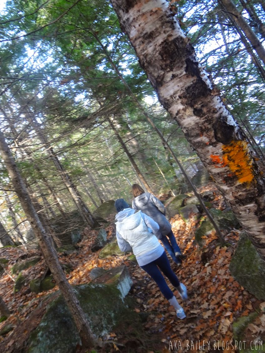 Hiking through the woods near Newfound Lake in Bristol, New Hampshire