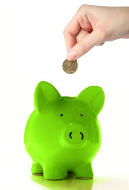 Jolanda verburg groene belastingen for Zuinig leven en sparen