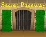 Solucion Secret Passway Guia