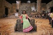 Sunny leone latest photos-thumbnail-1
