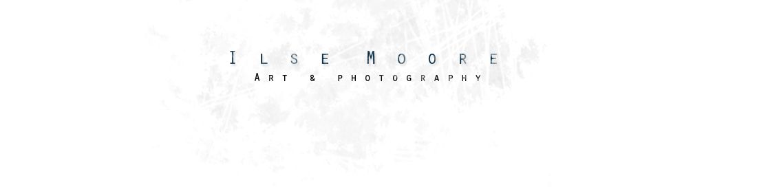 Ilse Moore Photography