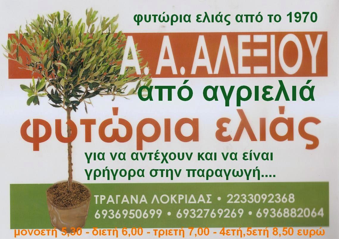 ΦΥΤΩΡΙΑ ΕΛΙΑΣ από ΑΓΡΙΕΛΙΑ για να αντέχουν!!!