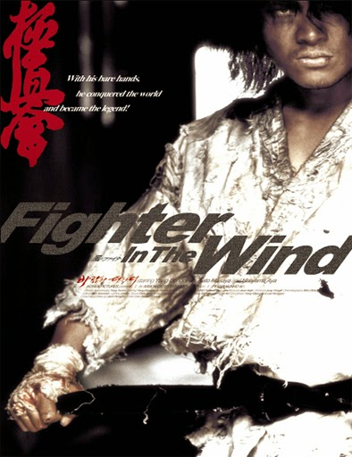 Ver Baramui Fighter (Fighter in the Wind) (2004) Online