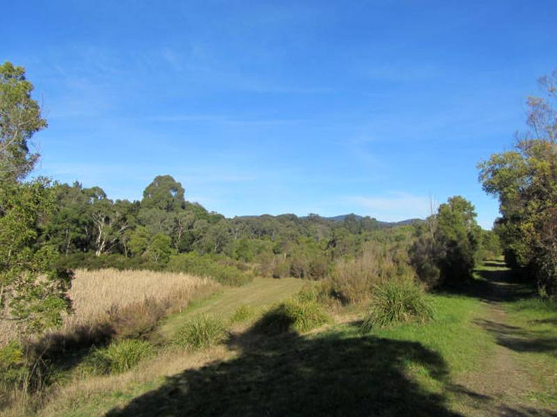 Bungalook Creek Reserve - July 201