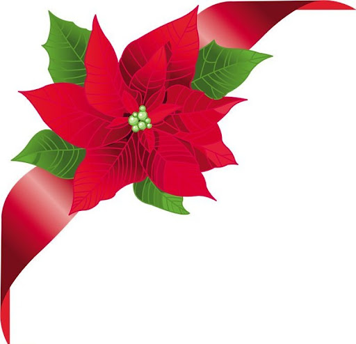 Ba l de navidad esquineros navide os flores de pascua 7 - Imagenes flores de navidad ...