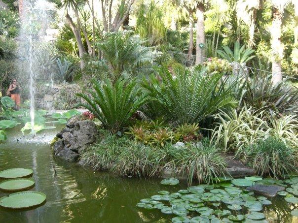 Arte pensieri e altro l 39 incanto di un giardino - Giardino la mortella ...