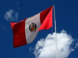 CONSEJO DE CONSULTA DE LA COMUNIDAD PERUANA EN HOLANDA