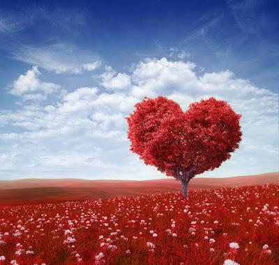 Les 7 types d'amour