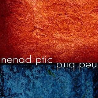 Ned Bird